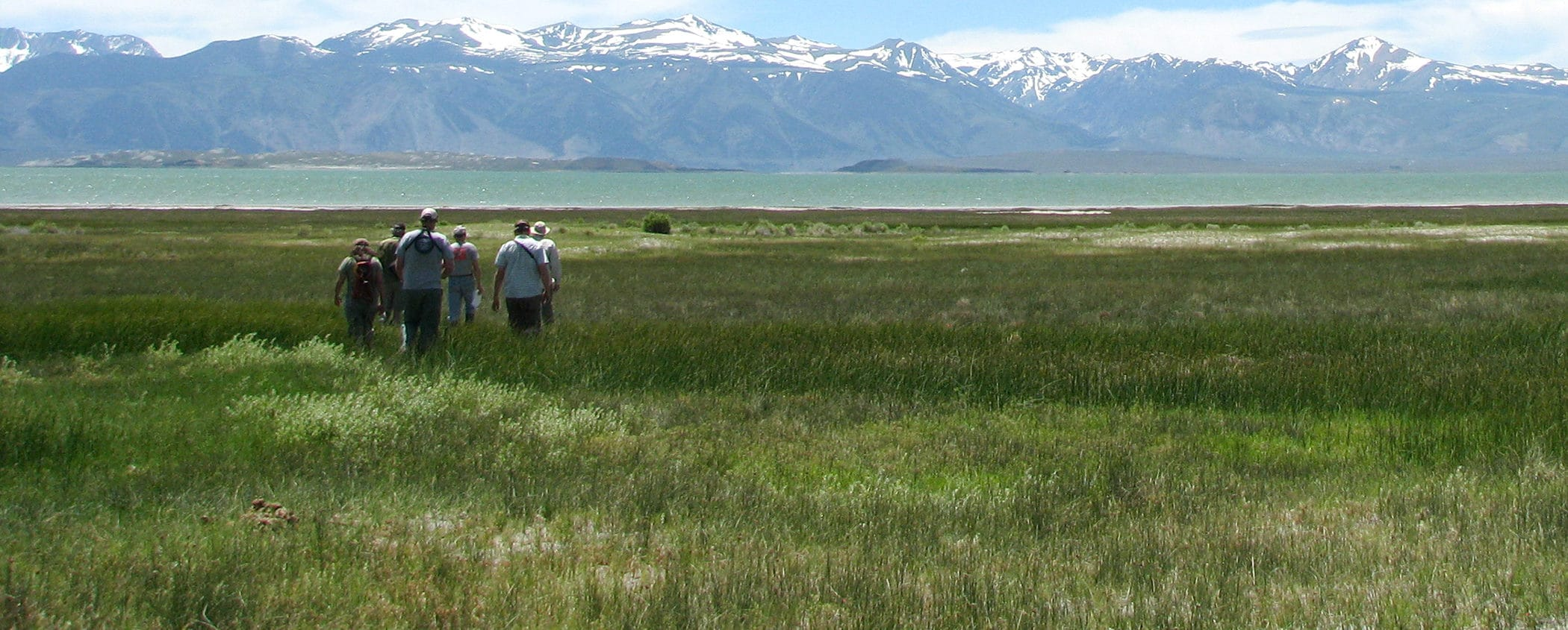 Six people walk in a close group together through a wide green wild grass field toward a blue-green lake in the distance with the Sierra Nevada rising sharply and dramatically in the far distance with snow capped peaks.