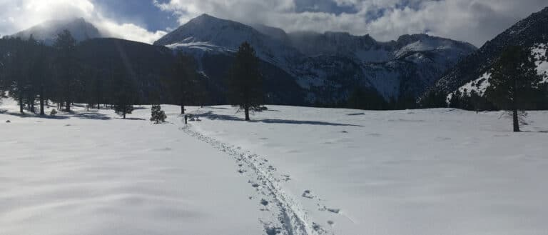 One pair of cross country ski tracks cuts through otherwise untouched snow, with the snow covered Sierra Nevada mountains in the background.