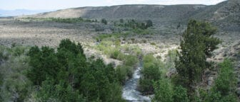 A rushing blue gray stream twists through a gray hilly landscape of sagebrush, with greener vegetation along the water.